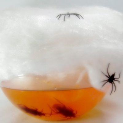 Teia-de-AranhaP-Halloween-12591-Unidade