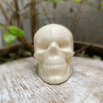 105918-Forma-de-Acetato-com-Silicone-Cranio--9997--BWB-2