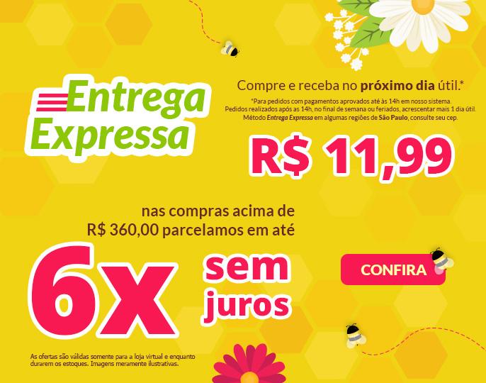 + ENTREGA EXPRESSA 11,99 E 6X